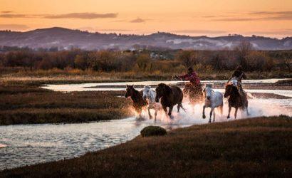 mulan padock cover 700 410x250 - Auszeit von Peking - die Mulan Paddok Grasland Tour